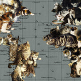 cat world art print close up