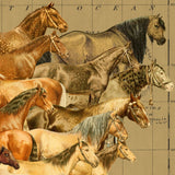 World of Horses Hanging Wall Art Canvas