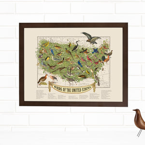 USA state birds wall art framed