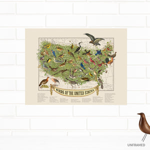 Official State Birds of the USA Fine Map Art Print