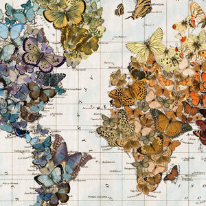 Butterfly Migration World Canvas Hanging Map