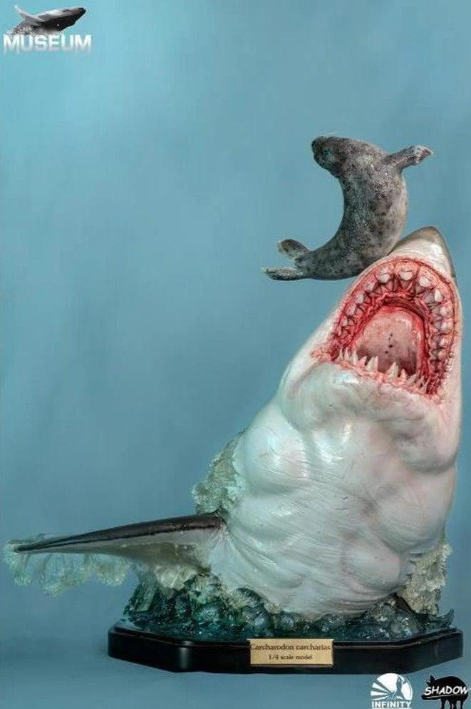 The Great White Shark (Carcharodon carcharias) Museum Series Statue By Infinity Studio