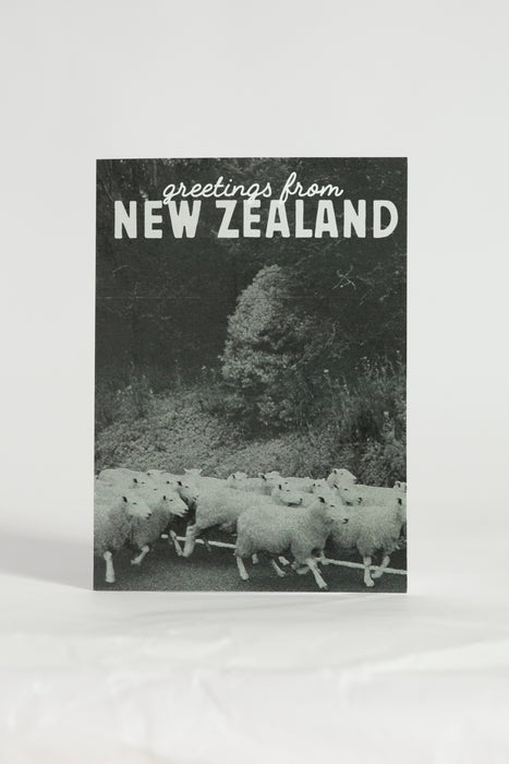 Greetings From New Zealand Sheep Card