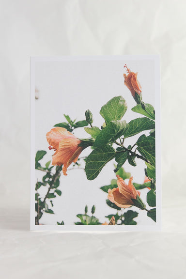 Eighties Tropic Card
