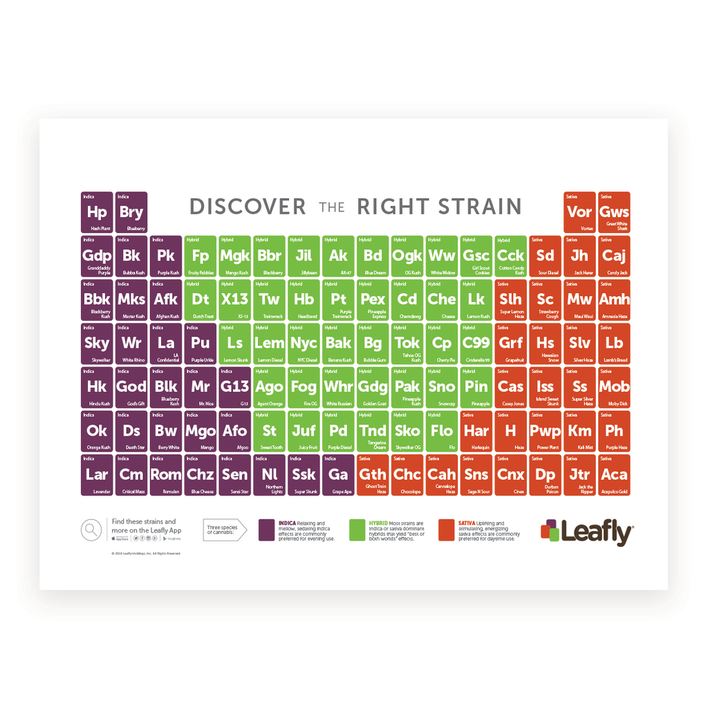 Leafly Cannabis Strain Tile Posters ǀ Leafly Shop
