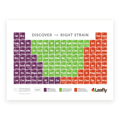 Leafly Strain Poster - Leafly Store