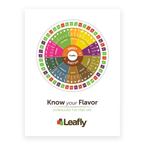 Leafly Flavor Wheel Poster - Leafly Store