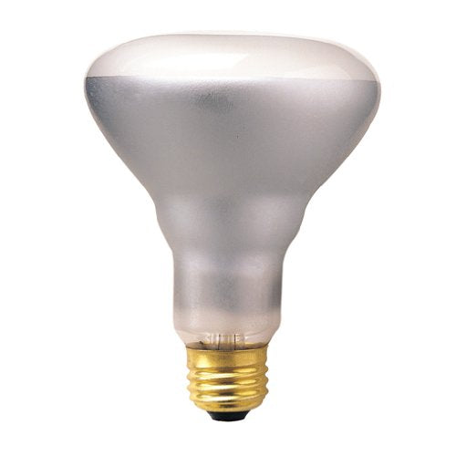 Bulbrite 65BR30FL2 65 Watt Incandescent BR30 Reflector, Flood, Medium Base, Clear