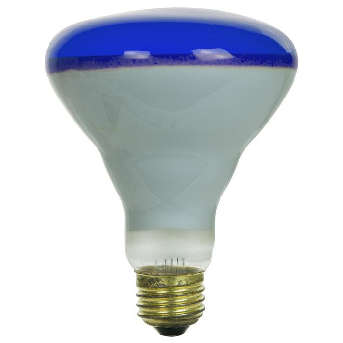 65 Watt BR30 Colored Reflector, Medium Base, Blue