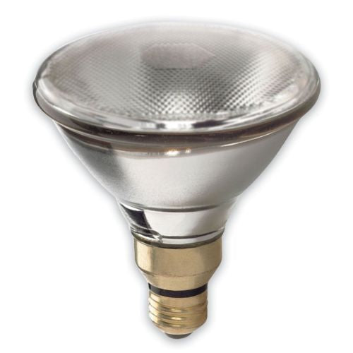 GE Lighting 48037 150-Watt 1700-Lumen Outdoor PAR38 Incandescent Light Bulb, Clear
