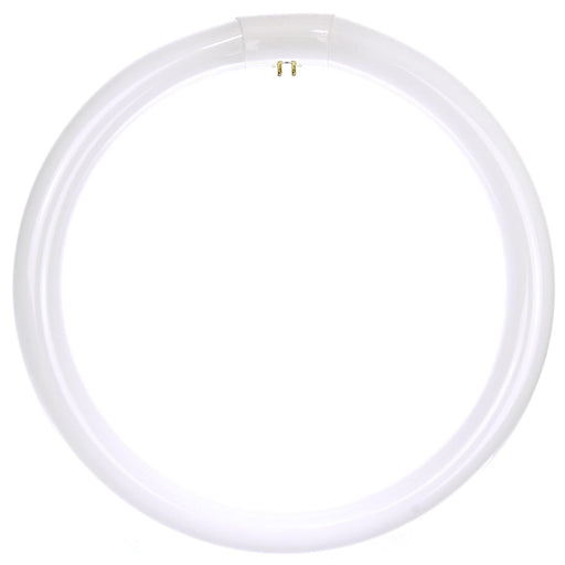 Sunlite 32 Watt T9 Circline, 4-Pin Base, Daylight