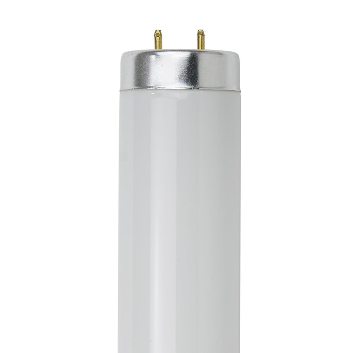 Sunlite 20 Watt T12 Colored Straight Tube, Medium Bi-Pin Base, Natural