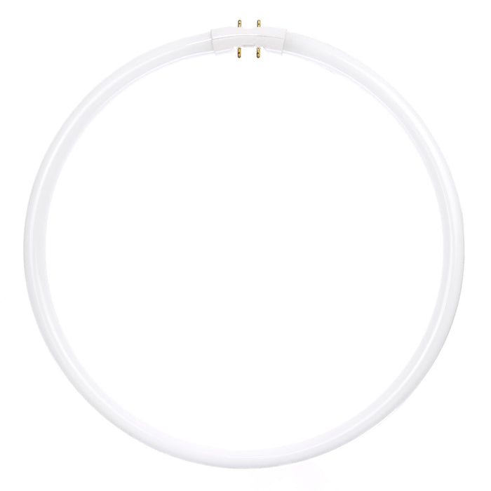 Sunlite 40 Watt T5 Circline, 2GX13 Base, Neutral White
