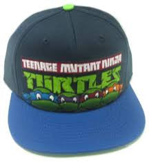 Ninja Turtles Hat - Logo