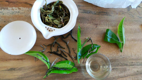 Lab Tested - 2015 Ancient Tea Tree Puer (Hundreds year old tea trees) 50g, 60cups+