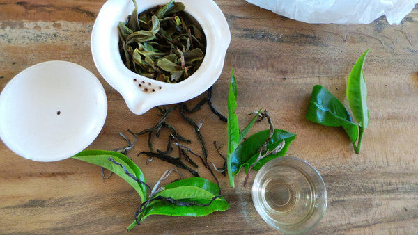 Lab Tested - Green Tea- Ancient Tea Tree Puer (Hundreds Year Old Tea Trees) 50g, 60cups+