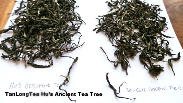 2014 Hu's  Hundreds Year Old Ancient Tree Unfermented Puerh Cake Tea 357g (大胡寨古樹茶)