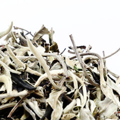 Moon Light White Tea (Old Tea Tree, High Mountain Tea )  國色天香古樹白茶
