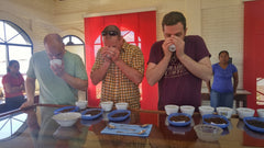 Coffee Cupping Clinic