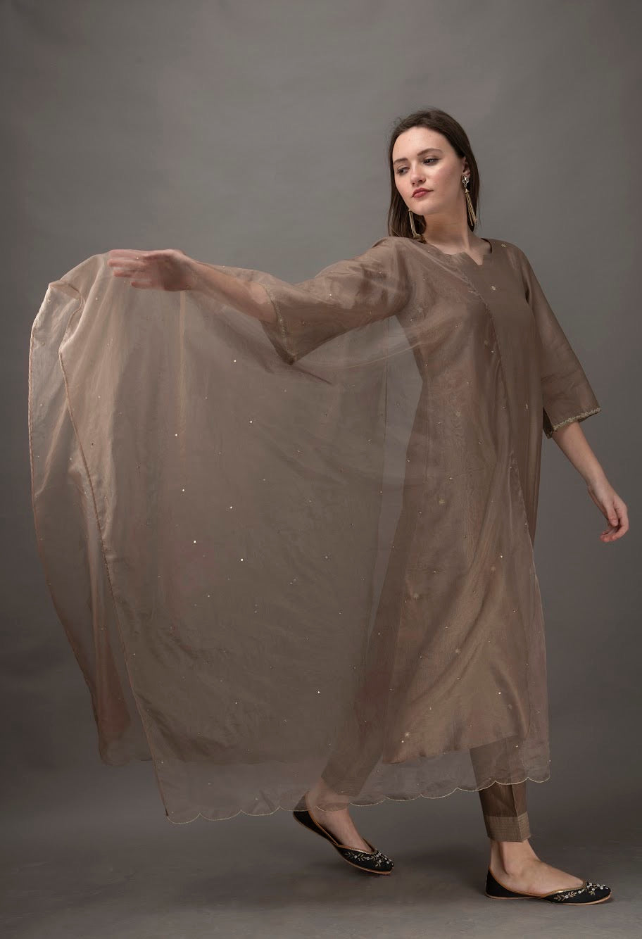Taupe Organza Dupatta with Sequin