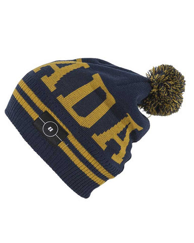 WATCHER BEANIE NAVY