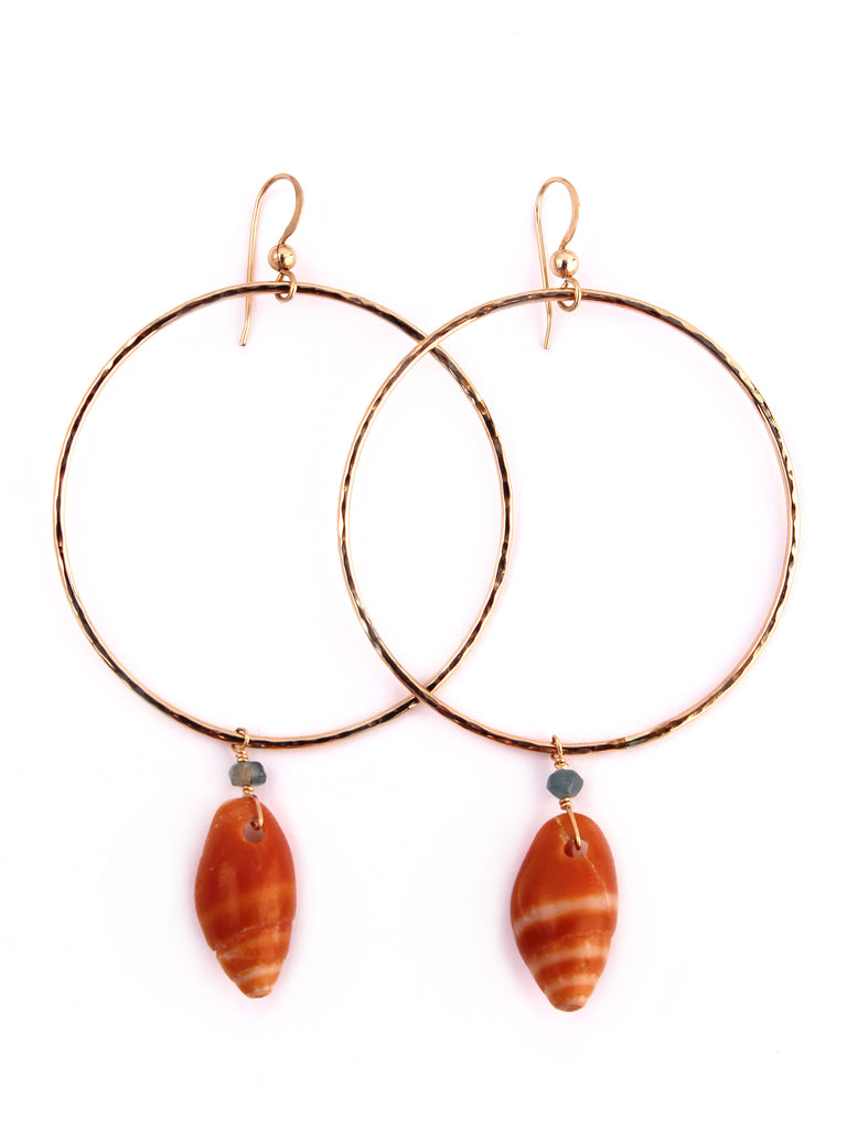 ✧ GOLD+SHELL HOOPS ✧
