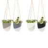Medium Bobbin Hanging Planter (White)