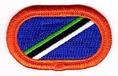 ARMY 160th Aviation Airborne Group Military Patch OVAL