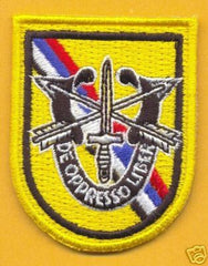 1st SPECIAL FORCES Airborne Korea DUI Beret Flash Patch