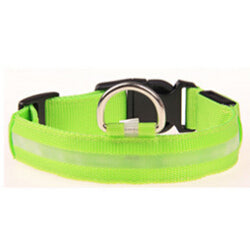 Nylon Pet LED Dog Collar | PETSARAMA-ilovemypet.com-Green-L-Petsarama