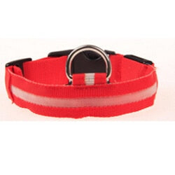 Nylon Pet LED Dog Collar | PETSARAMA-ilovemypet.com-Red-L-Petsarama
