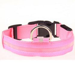 Nylon Pet LED Dog Collar | PETSARAMA-ilovemypet.com-Pink-L-Petsarama