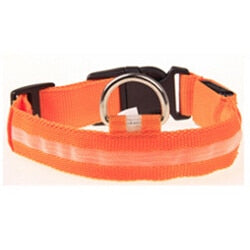 Nylon Pet LED Dog Collar | PETSARAMA-ilovemypet.com-Orange-L-Petsarama