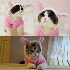 CUTE RABBIT CAT HOODIES😽😸😻🐈