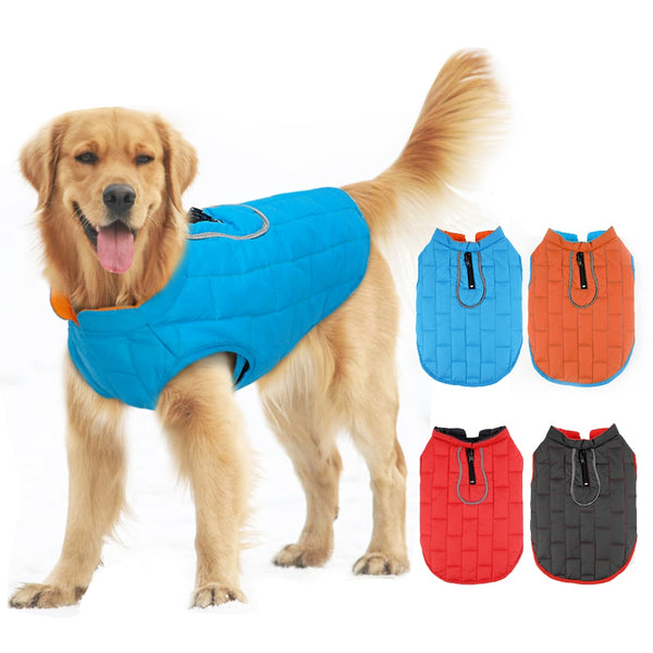 GOLDEN RETRIEVER DOGS WARM COAT 🐶🐾🐕