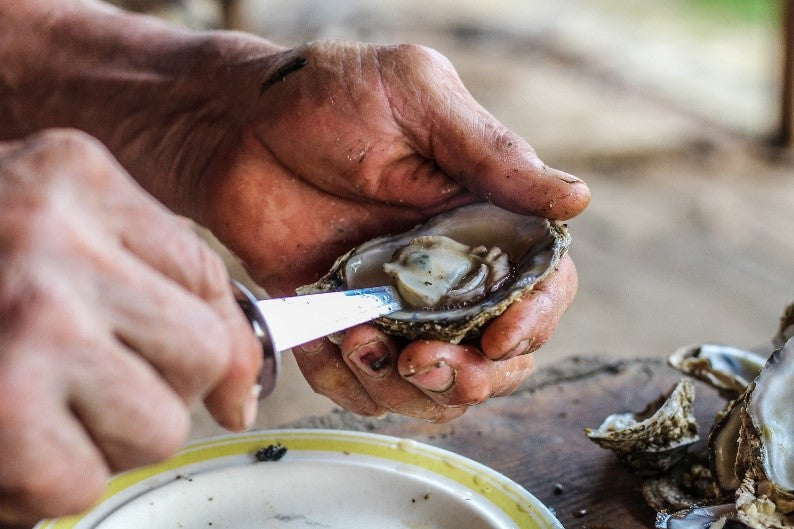 A Guide to Shucking Blue Point Oysters