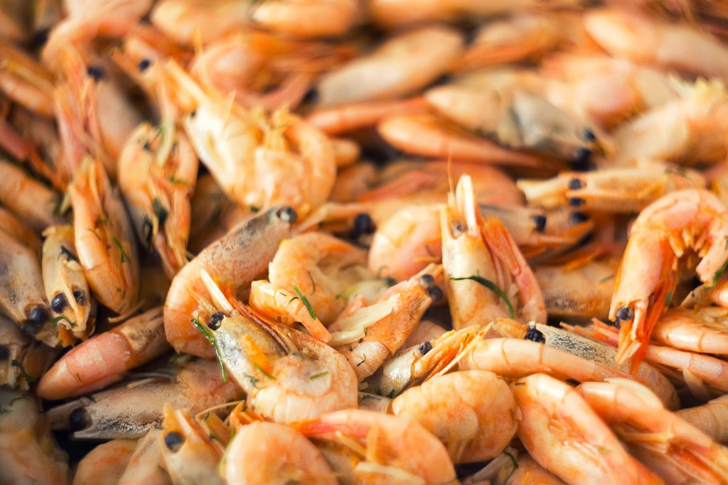 5 Healthy Reasons to Eat Shrimp