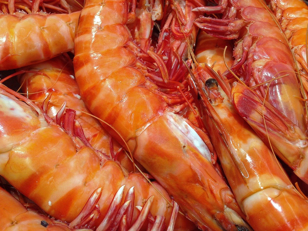 Everything You Need to Know About Eating Shrimp
