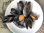 "Restaurant Ready ""White water"" mussels East Coast"