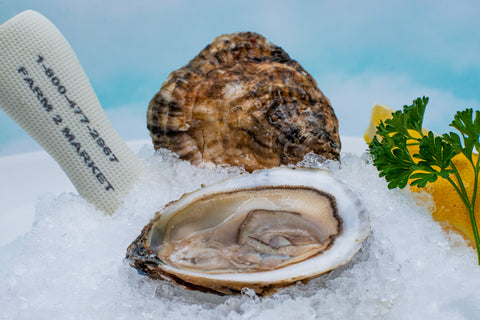Connecticut Blue Point Oysters - Long Island Sound, CT