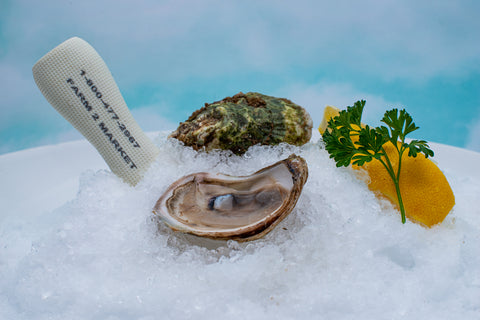 Quonset Point Oysters® - East Passage, Narragansett Bay, Rhode Island, USA
