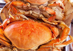 Fresh Cooked Whole Dungeness Crabs