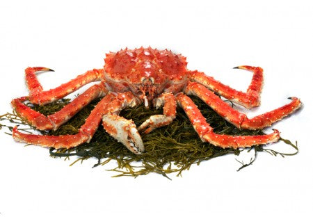 Live Alaskan King Crab