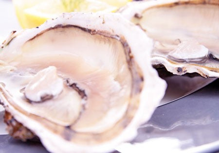 West Coast Cultured Oyster Sampler