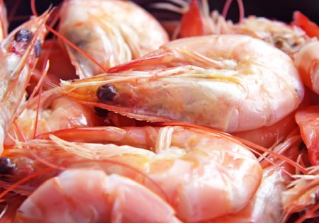 Fresh Wild Heads-On White Shrimp