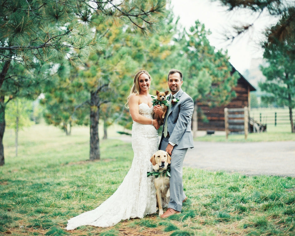 bride, groom and their dogs with greenery collars