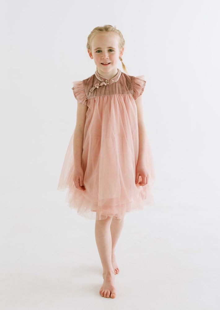 Annie Velvet and Tulle Dress