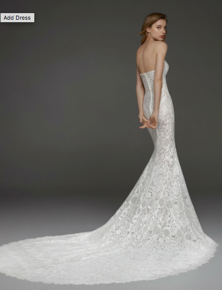 Pronovias Cordoba Sample Gown