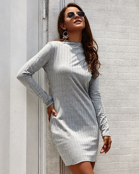 Long Sleeve Round Neck Slim knitted Mini Dress
