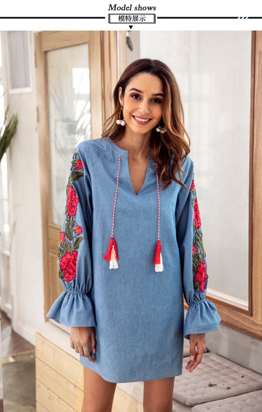 Autumn Long sleeve V neck Embroidery Shift Dresses